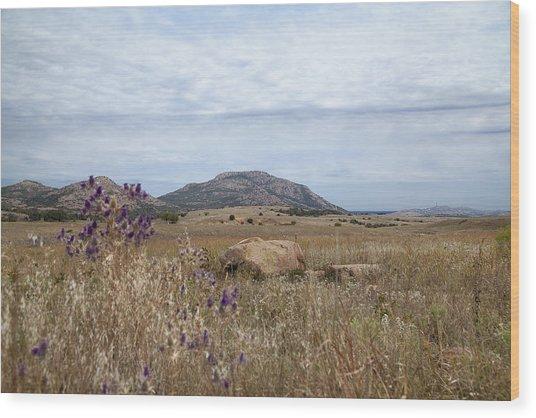 Wichita Landscape Wood Print