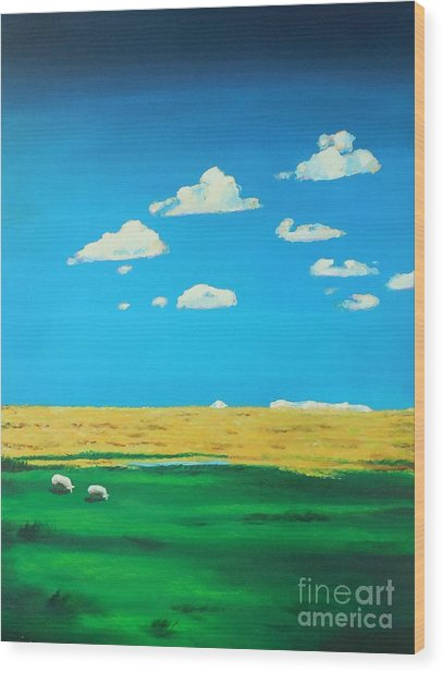 Wide Open Spaces And A Big Blue Sky Wood Print