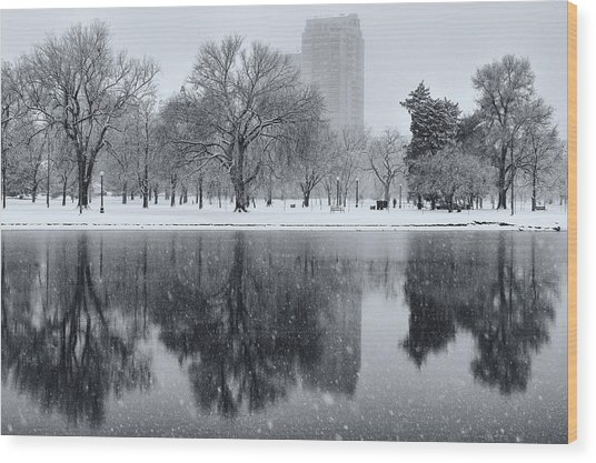 Snowy Reflections Of Trees In Lake At City Park, Denver Co  Wood Print