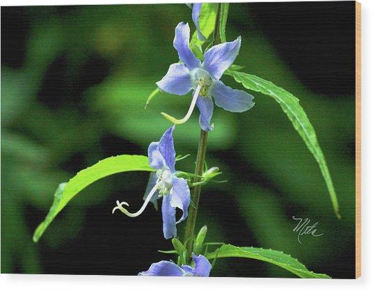 Wild Blue Flowers Wood Print