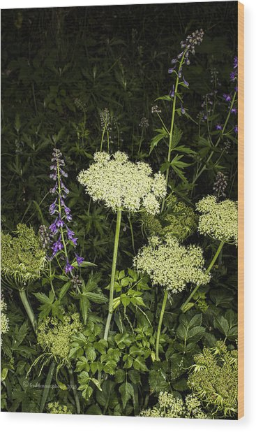 Wood Print featuring the photograph Wild Celery And Larkspur by Fred Denner