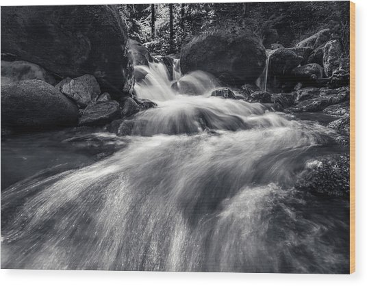 wild creek in Harz, Germany Wood Print