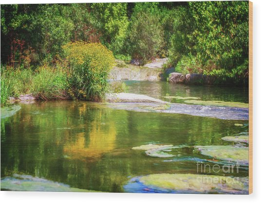 Wild Flowers On Blue River Wood Print