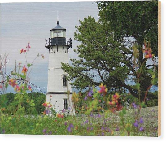 Wild Flowers On Rock Island Wood Print