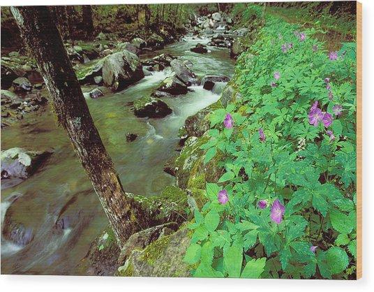Wild Geraniums On Bradley Fork Wood Print by Alan Lenk