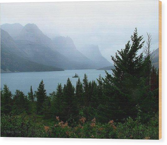 Wild Goose Island In The Rain Wood Print