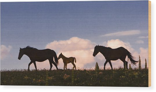 Wild Horses And Clouds Wood Print