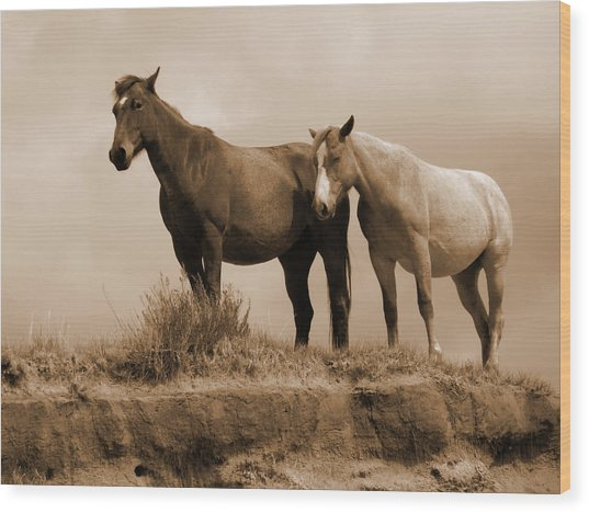 Wild Horses In Western Dakota Wood Print