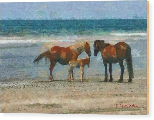 Wild Horses Of The Outer Banks Wood Print