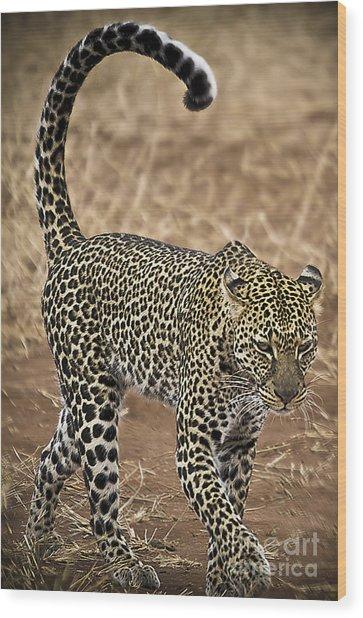 Wild Lady Wood Print by Alessandro Giorgi Art Photography