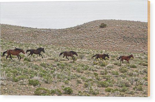 Wild Mustang Herd Running Wood Print