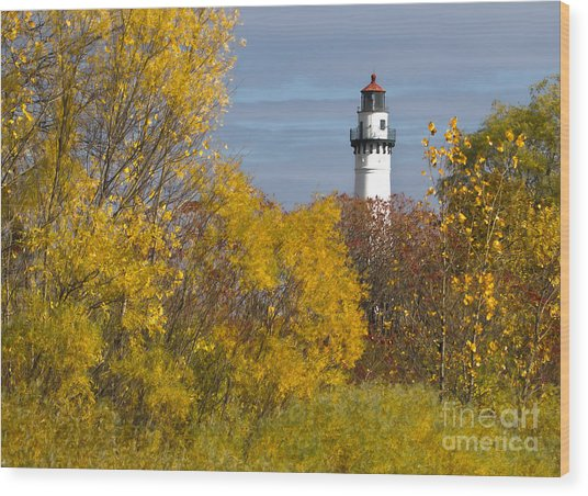 Wind Point Lighthouse In Fall Wood Print