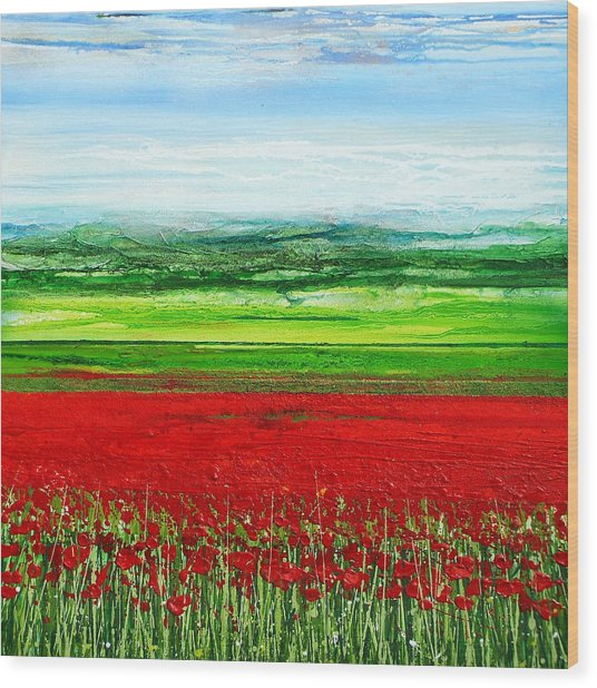 Wild Poppies Corbridge Northumberland 2009 Wood Print by Mike   Bell