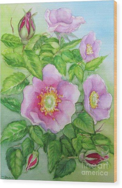 Wild Rose 3 Wood Print