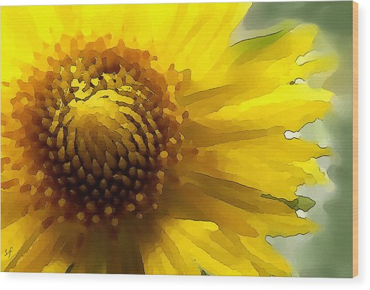 Wood Print featuring the digital art Wild Sunflower Up Close by Shelli Fitzpatrick