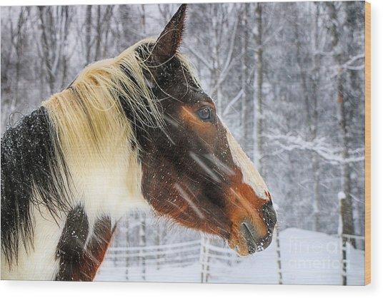 Wild Winter Storm Wood Print