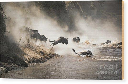 Wildebeest Leap Of Faith Into The Mara River Wood Print