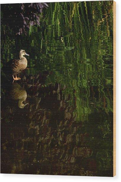 Wilderness Duck Wood Print