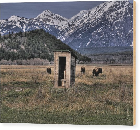 Wilderness Outhouse Wood Print