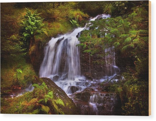 Wilderness. Rest And Be Thankful. Scotland Wood Print