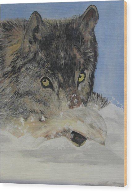 Wildeyes In The Snow Wood Print