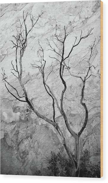 Wildfire Manzanita Wood Print