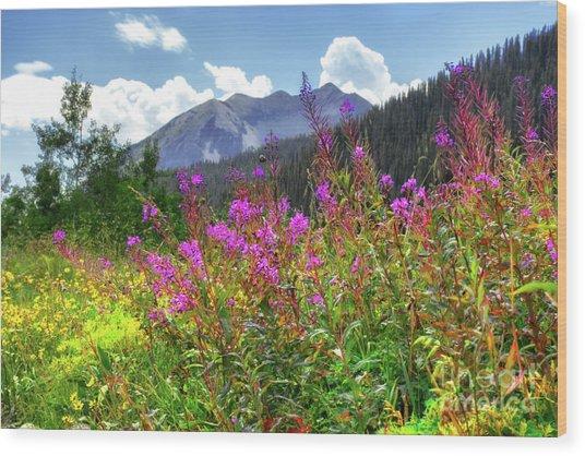 Wildflower Capital Wood Print