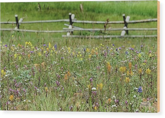 Wildflower Fence Wood Print