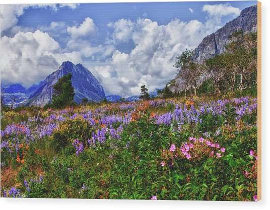 Wildflower Profusion Wood Print