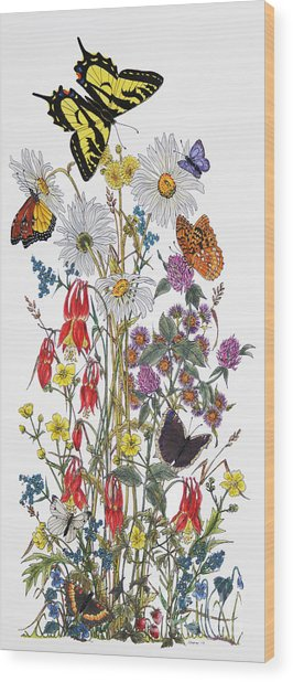 Wildflowers And Butterflies Of The Valley Wood Print