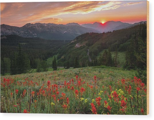 Wildflowers At Gaurdsmans Pass Wood Print