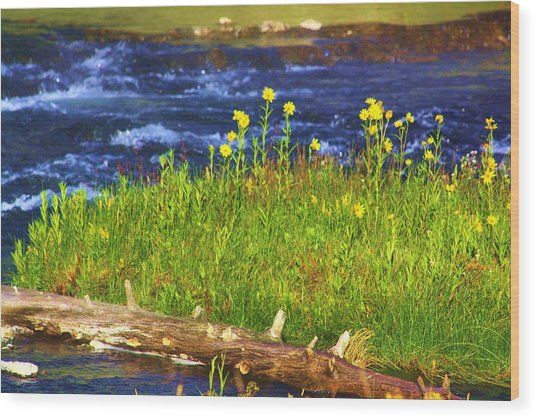 Wildflowers By The River Wood Print by Russell  Barton