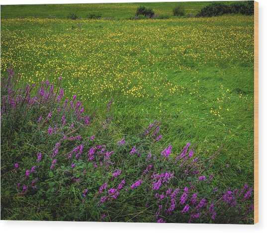 Wood Print featuring the photograph Wildflowers In An Irish Field by James Truett