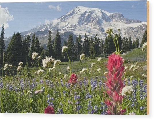 Wildflowers In Mount Rainier National Wood Print