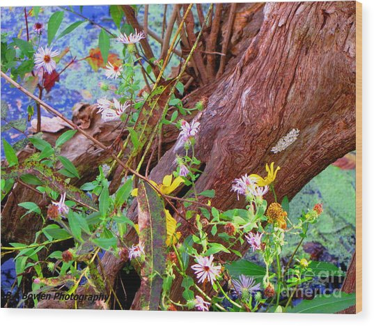 Wildflowers On A Cypress Knee Wood Print