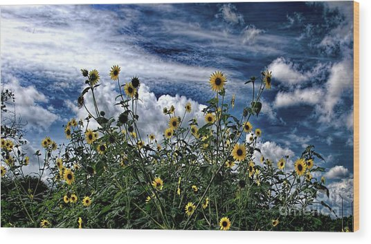 Wildflowers On The Brazos Wood Print