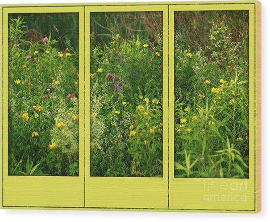 Wildflowers Through A Window Wood Print