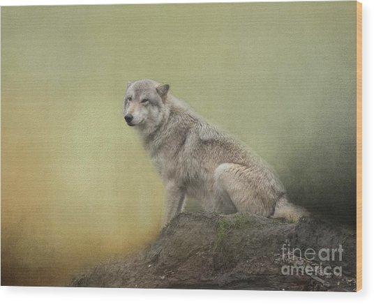 Wildlife Alaska Wood Print