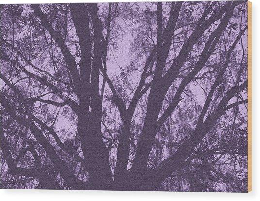 Wilds Of Myakka 006 Wood Print