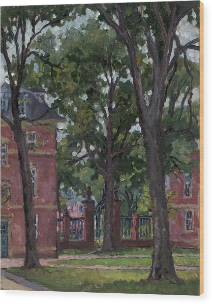 Williams College Frosh Quad Wood Print