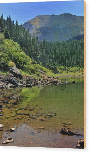 Williams Lake Wood Print