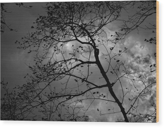 Wind And Rain Are On The Way Wood Print