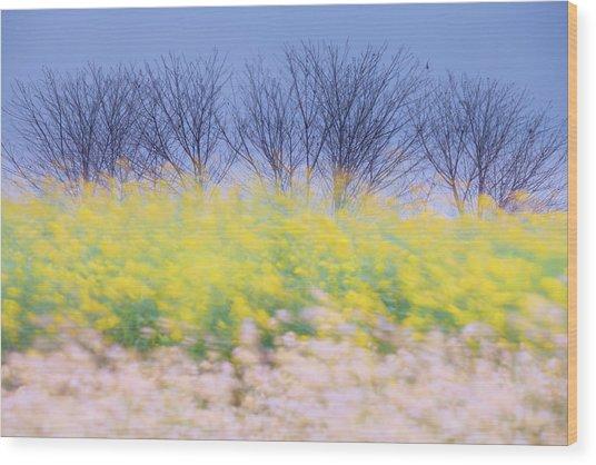Wind Strokes Wood Print