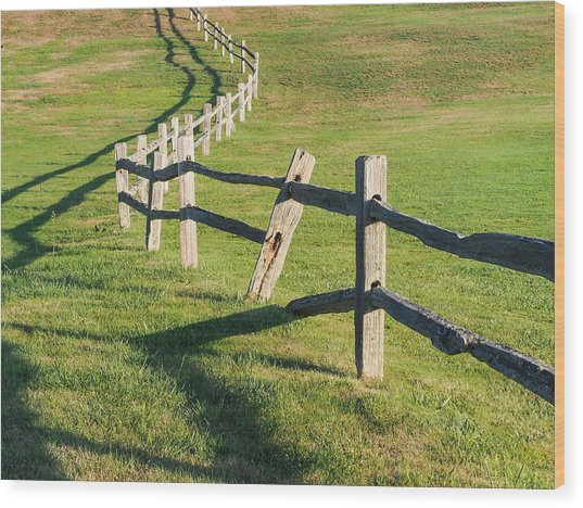 Winding Fences Wood Print
