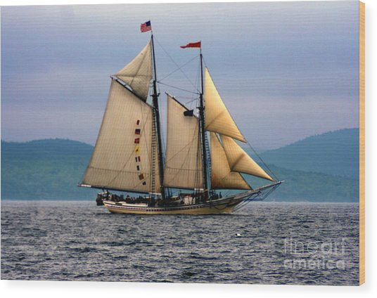 Windjammer Lewis R French Wood Print by Jim Beckwith