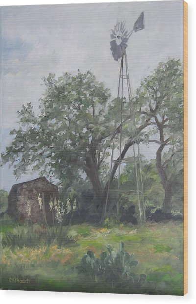 Windmill At Genhaven Wood Print