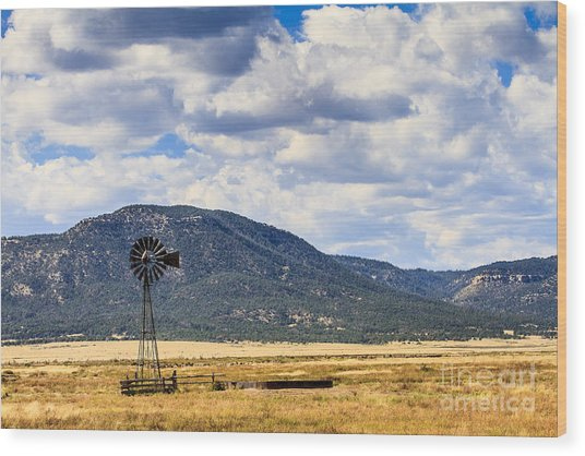 Windmill New Mexico Wood Print