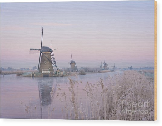 Windmills In The Netherlands In The Soft Sunrise Light In Winter Wood Print