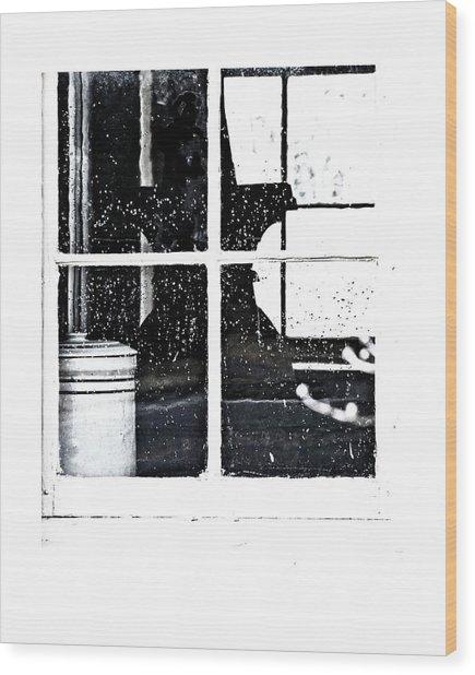 Window 3679 Wood Print