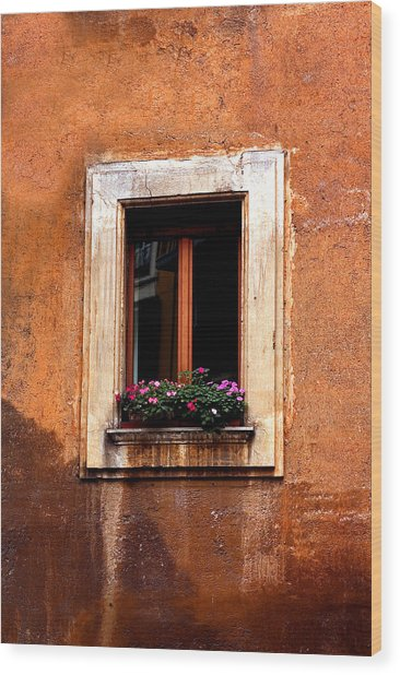 Window And Flowers Rome  Wood Print by Xavier Cardell